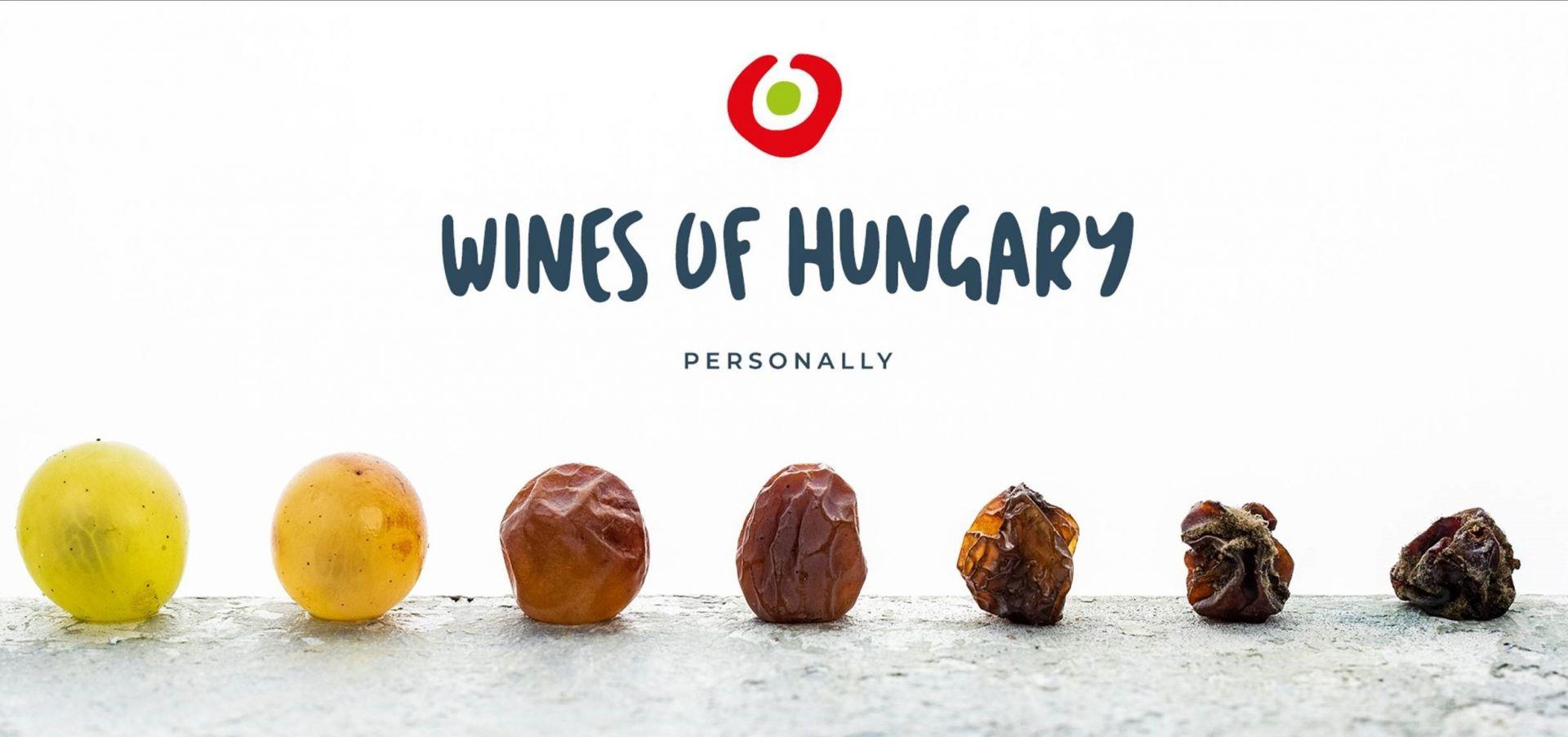 Elindultak a magyar bor közösségi médiaoldalai