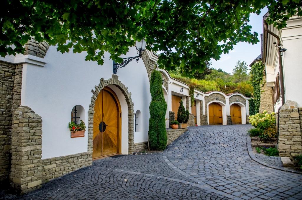 Hungary's Most Beautiful Vineyard Award 2021